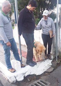 Beim Einarbeitungs-Lehrgang: Hund Braille zeigt die hohe Gehsteigkante an