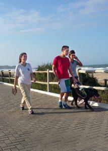 Einarbeitungs-Lehrgang: Gerade gehen mit Hund Ian im Führgeschirr